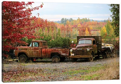 Two Autumn Vintage Trucks Canvas Art Print