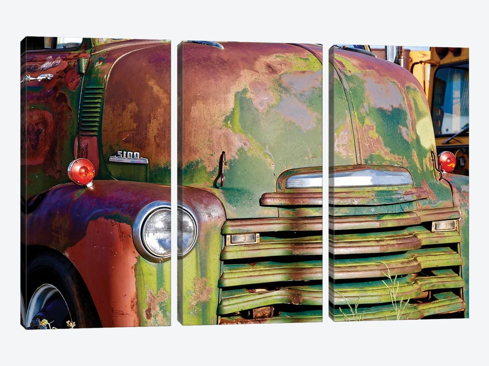 Green Rusted Grill by Susan Vizvary 3-piece Canvas Art Print