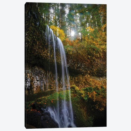 Mystical Falls I Canvas Print #SUV211} by Susan Vizvary Canvas Artwork