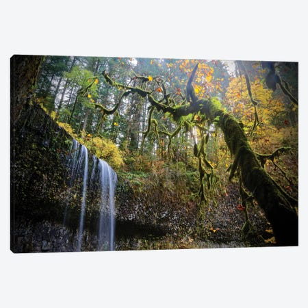 Mystical Falls II Canvas Print #SUV212} by Susan Vizvary Canvas Art