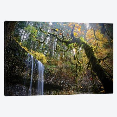 Mystical Falls II Canvas Print #SUV212} by Susan Vizvary Canvas Art