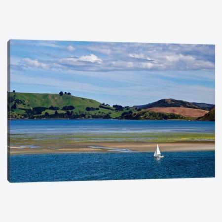 Lone Sailor In New Zealand I Canvas Print #SUV222} by Susan Vizvary Canvas Art Print
