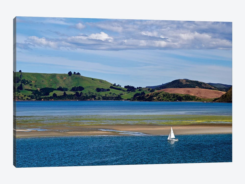 Lone Sailor In New Zealand I by Susan Vizvary 1-piece Canvas Print