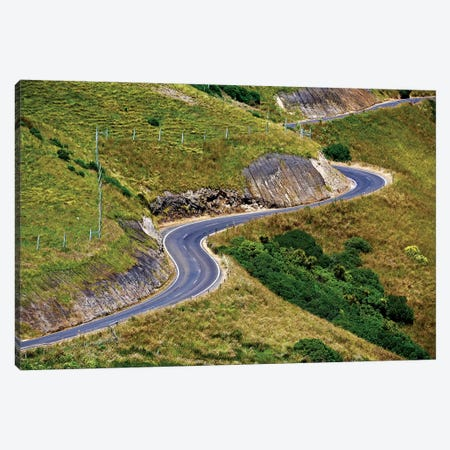 New Zealand Curved Road Canvas Print #SUV225} by Susan Vizvary Canvas Artwork