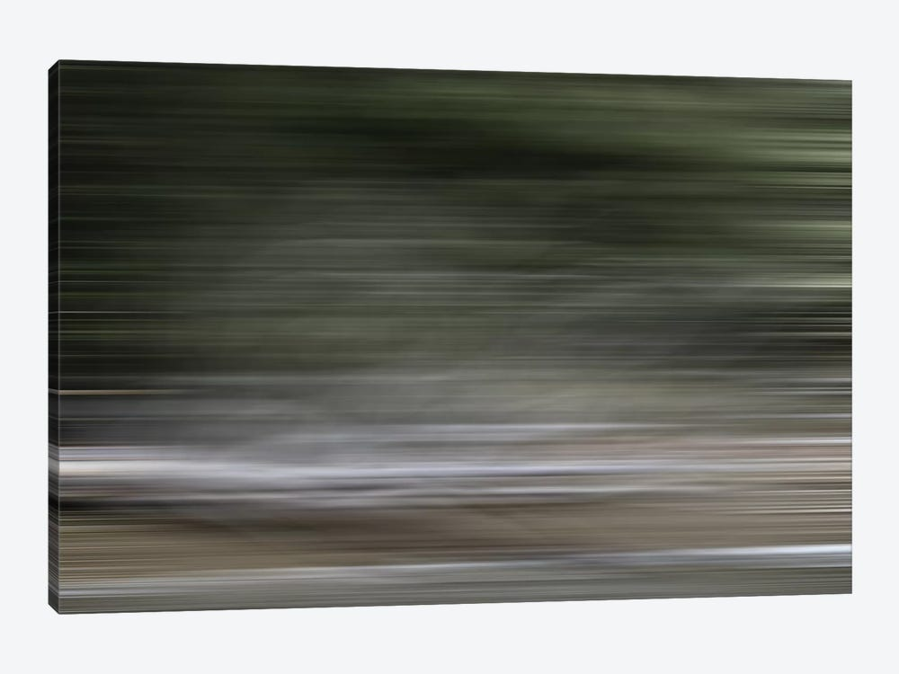 Tree Branch Blur Color 1-piece Canvas Artwork