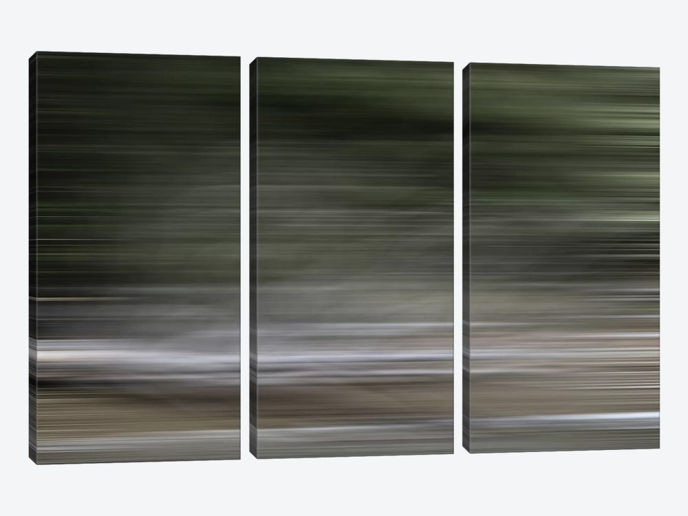 Tree Branch Blur Color 3-piece Canvas Artwork