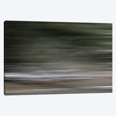 Tree Branch Blur Color Canvas Print #SUV243} by Susan Vizvary Canvas Art Print