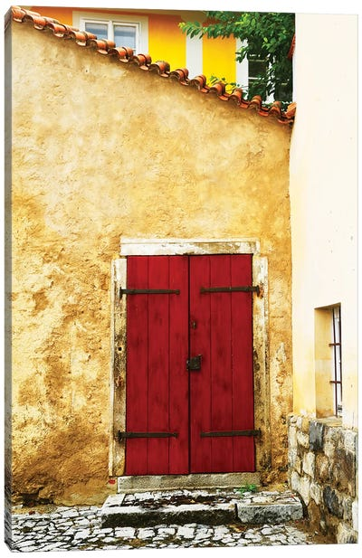 Double Red Door Canvas Art Print