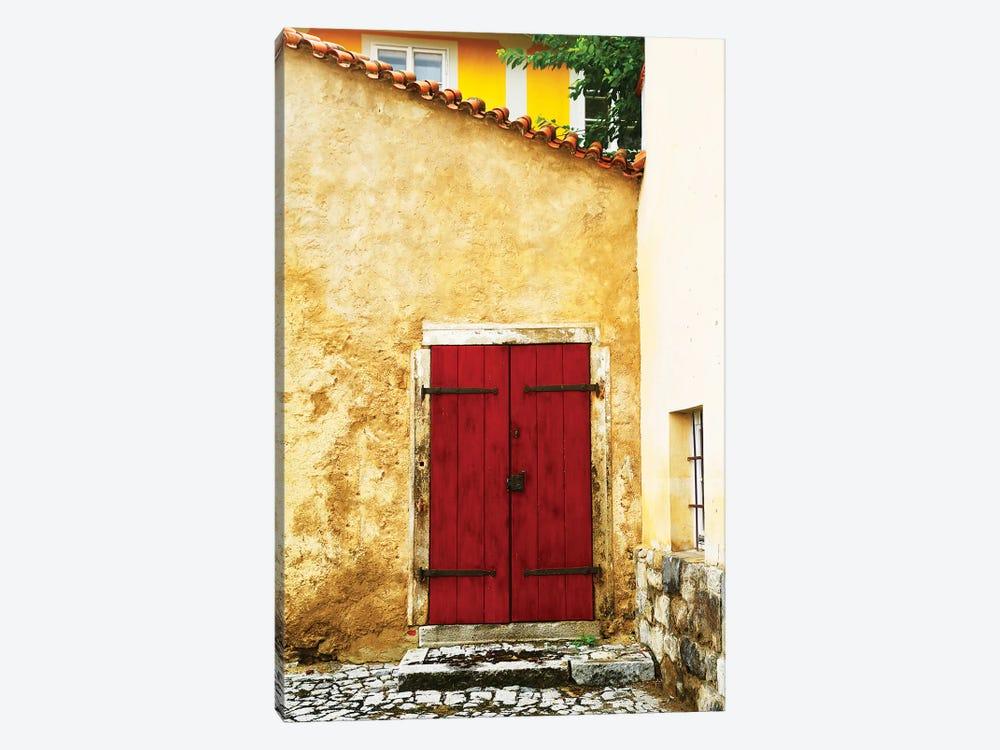 Double Red Door by Susan Vizvary 1-piece Canvas Print