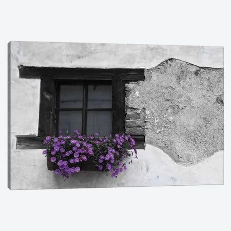 Purple Flower Box In Black And White Canvas Print #SUV288} by Susan Vizvary Canvas Art Print
