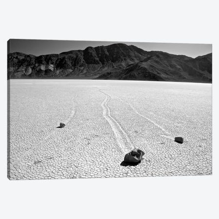 Death Valley Race Track Canvas Print #SUV30} by Susan Vizvary Canvas Print