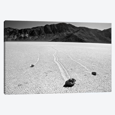 Death Valley Race Track Canvas Print #SUV30} by Susan Vizvary Canvas Print