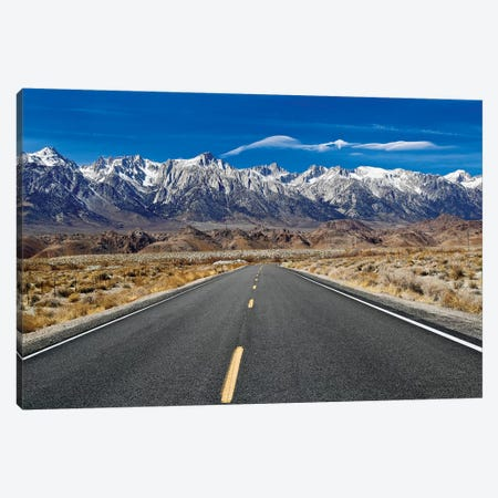 Eagle Cloud Over Lone Pine Canvas Print #SUV31} by Susan Vizvary Canvas Print