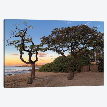 Hawaiian Sunset Through The Trees Canvas Print #SUV322} by Susan Vizvary Canvas Wall Art