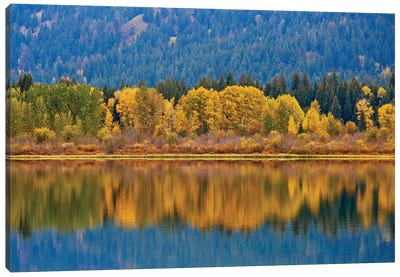 Autumns Reflection Canvas Art Print