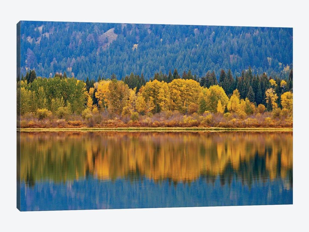 Autumns Reflection by Susan Vizvary 1-piece Art Print