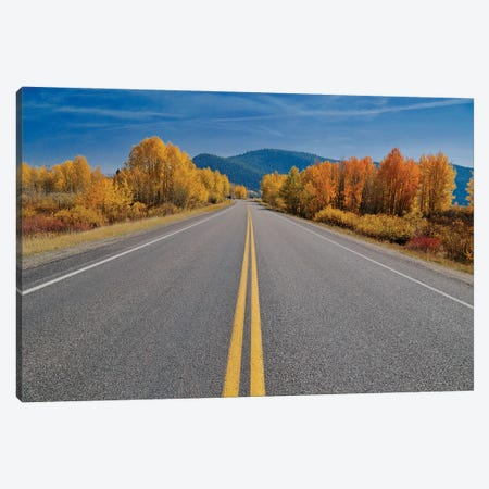 Autumn's Road Canvas Print #SUV337} by Susan Vizvary Canvas Art
