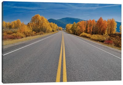 Autumn's Road Canvas Art Print