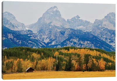 Grand Tetons Log Cabin Canvas Art Print