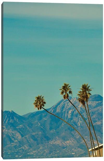 Vintage Palm Trees Canvas Art Print