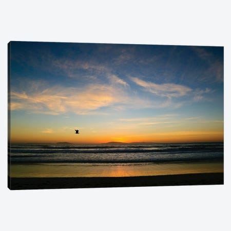 Winter Sunset Canvas Print #SUV385} by Susan Vizvary Canvas Print