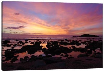 Punta Mita Sunset, Pink Canvas Art Print