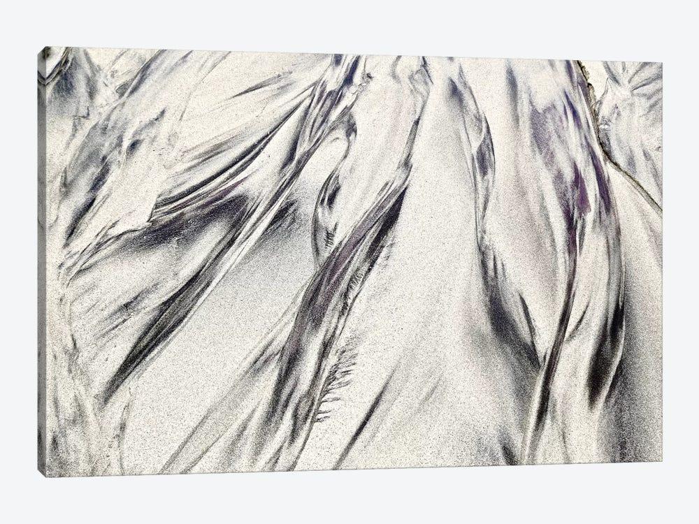 Purple Sand Of Big Sur by Susan Vizvary 1-piece Canvas Art