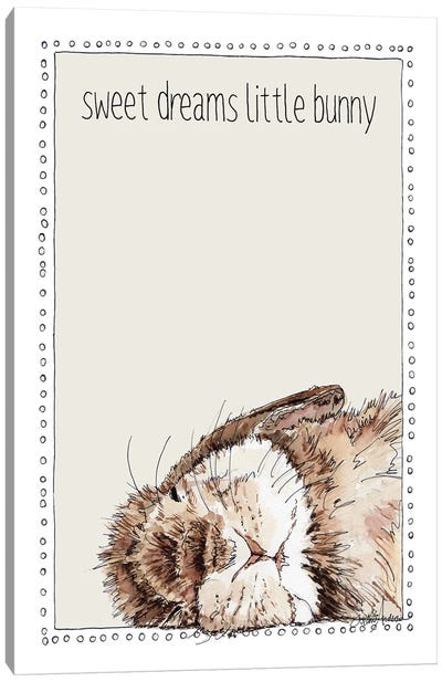 Sweet Sleeping Bunny Canvas Art Print