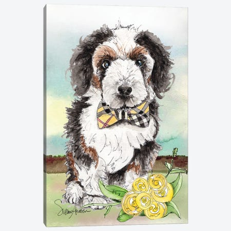 Bernadoodle Bow Tie Canvas Print #SUZ154} by Suzanne Anderson Canvas Wall Art