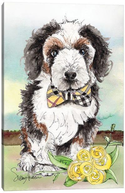 Bernadoodle Bow Tie Canvas Art Print
