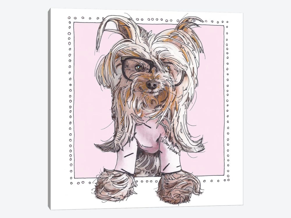 Willie, Cute In Pink by Suzanne Anderson 1-piece Canvas Print