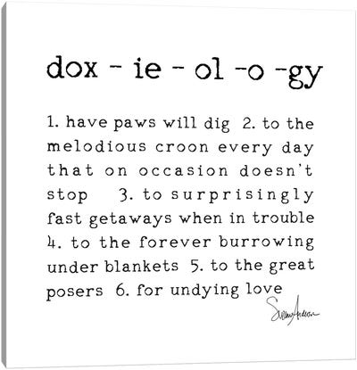 Doxieology Canvas Art Print