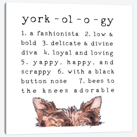 Yorkology Ears Canvas Print #SUZ84} by Suzanne Anderson Canvas Art Print