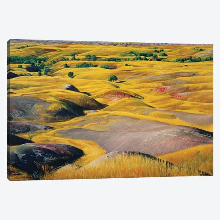 Badlands Prairie Canvas Print #SVD10} by Nick Savides Art Print