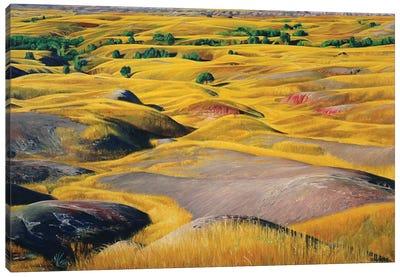 Badlands Prairie Canvas Art Print