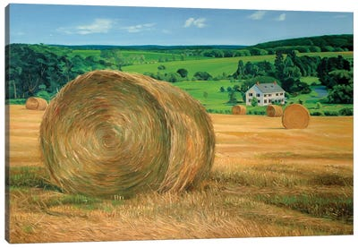 Bales In The Field Canvas Art Print