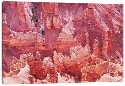 Cedar Breaks Canvas Art Print
