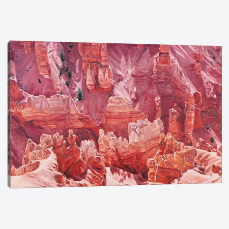 Cedar Breaks Canvas Print #SVD18} by Nick Savides Canvas Art Print