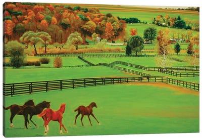 Frank's Farm Canvas Art Print