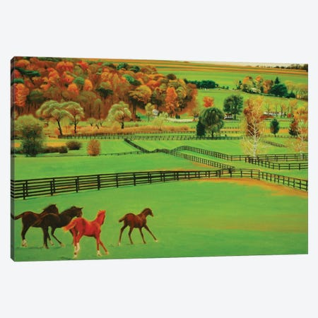 Frank's Farm 3-Piece Canvas #SVD26} by Nick Savides Art Print