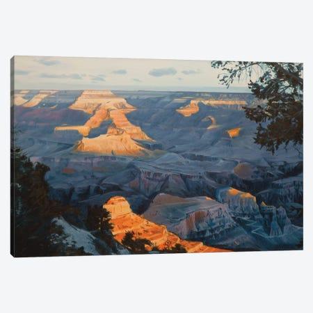 Grand Canyon At Sunrise I Canvas Print #SVD27} by Nick Savides Canvas Print