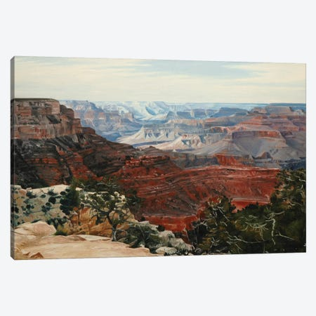 Grand Canyon In Midday Sun Canvas Print #SVD30} by Nick Savides Art Print