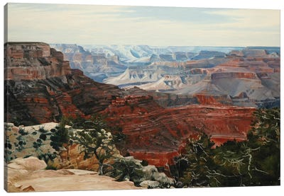 Grand Canyon In Midday Sun Canvas Art Print