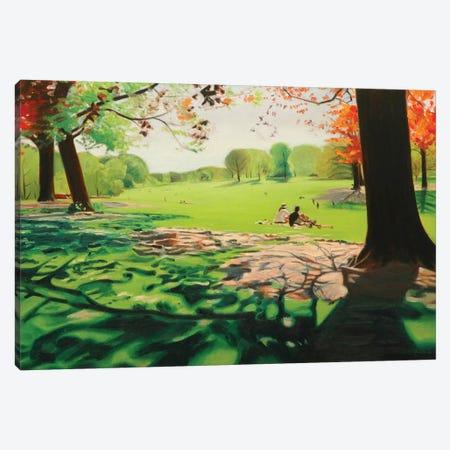 Long Meadow I Canvas Print #SVD38} by Nick Savides Canvas Art Print
