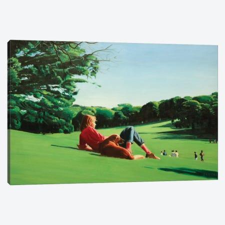 Long Meadow II Canvas Print #SVD39} by Nick Savides Canvas Print
