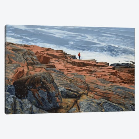Maine Coast - On The Edge Canvas Print #SVD43} by Nick Savides Canvas Wall Art