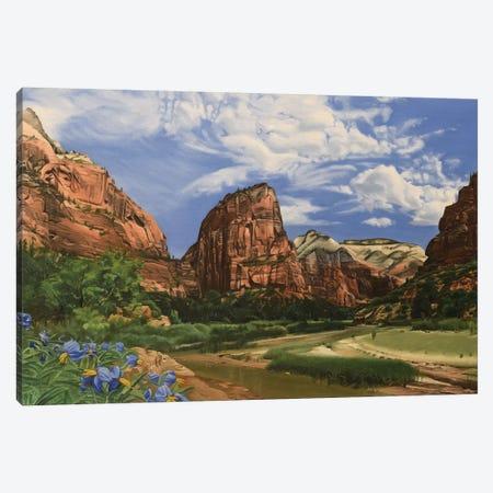 Angels Landing – Zion Canvas Print #SVD5} by Nick Savides Art Print