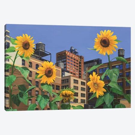 Rooftop Garden Canvas Print #SVD65} by Nick Savides Canvas Print