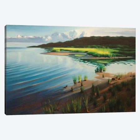 Shore And Setting Sun Canvas Print #SVD67} by Nick Savides Art Print