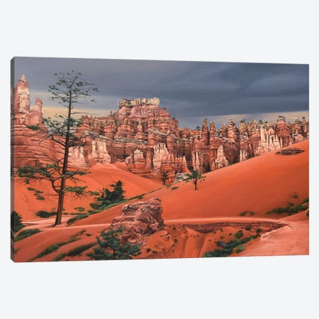 Storm In Bryce Canyon Canvas Print #SVD70} by Nick Savides Canvas Art Print